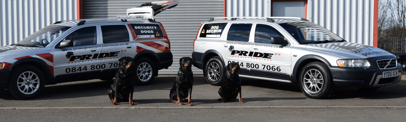 Unit of pride gb security dogs