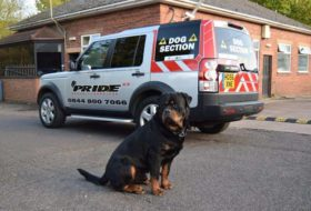 Pride GB security dog handlers gloucestershire