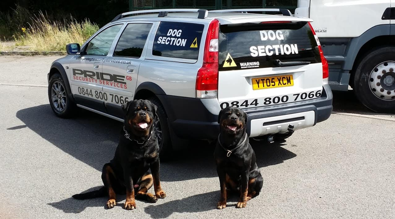 Security dogs on patrol