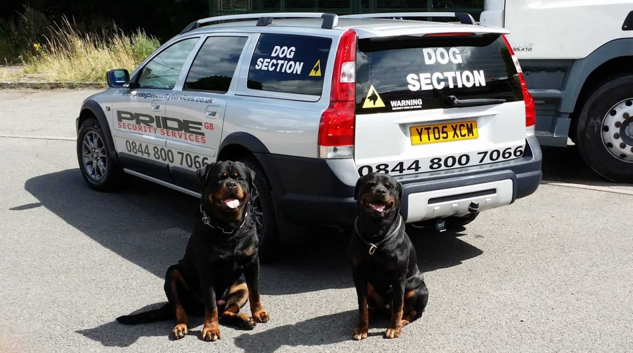 Security Dogs Handlers Falcon lodge