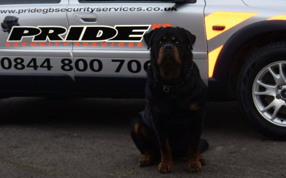Kingston upon Hull Construction Site Security