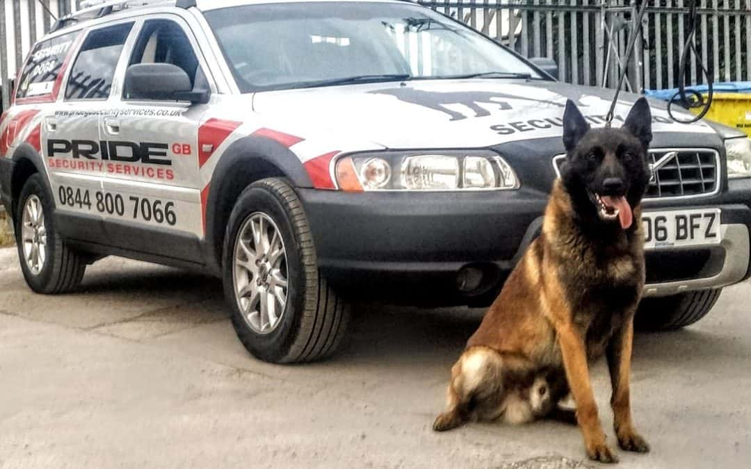 K9 Security Dogs