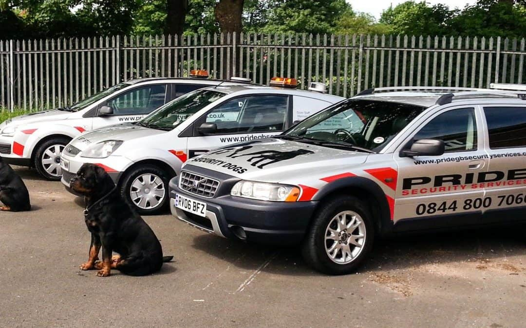 Stockport K9 security