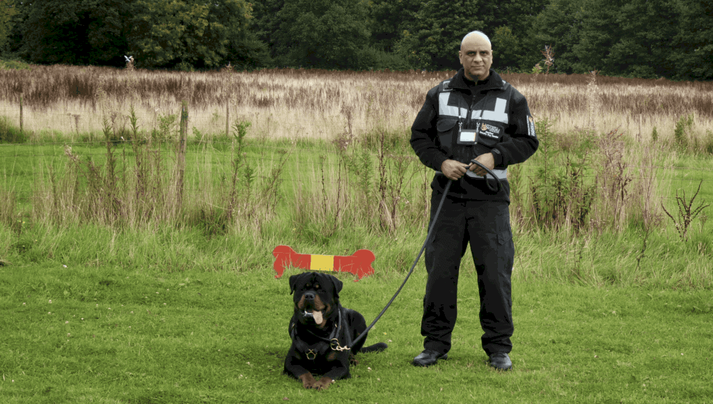 security-dog-handlers-Poole
